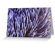 Artichoke flower Greeting Card