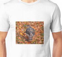 Coopers Hawk in Autumn Unisex T-Shirt