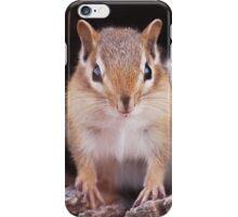 Hello Chippy! iPhone Case/Skin