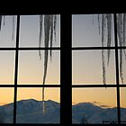 Icicles in Winter by JoAnn Glennie