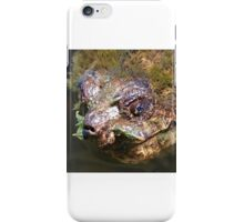 Cha Cha Cha Chia Snapping Turtle iPhone Case/Skin