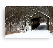 all covered for Christmas Canvas Print