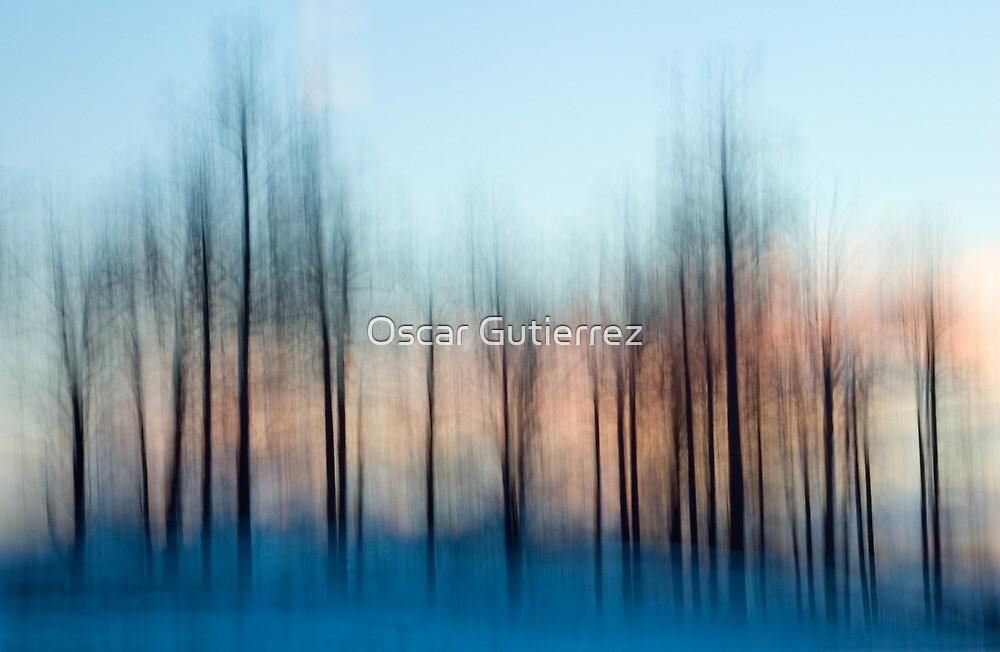 Winter Trees at Dawn by Oscar Gutierrez
