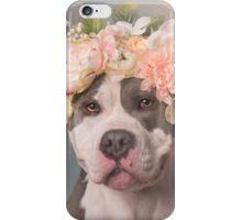 Flower Power, Bertha Bean iPhone Case/Skin