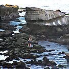 Stones and Tidepools by heatherfriedman