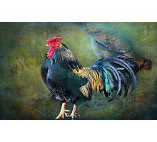 """Eggar Yolkel  Photographic Print"