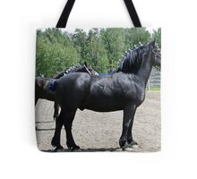 Proud Sire And His Mares Tote Bag
