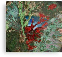 """""""Wood Lake""""  Metal Print"""
