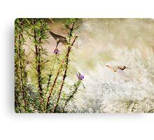 Hummingbird Garden Textured Canvas Print