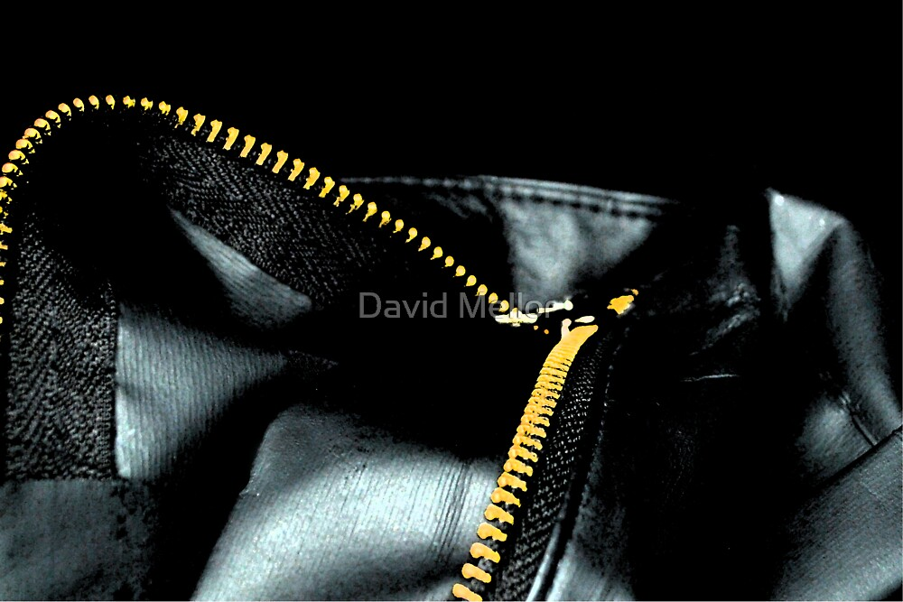 Zipper by David Mellor