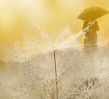 Rain by Marlies Odehnal
