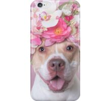 Flower Power, Blossom iPhone Case/Skin