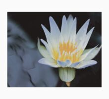 White Water Lily Aglow Kids Clothes