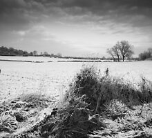 Near Saddington by Andy Stafford