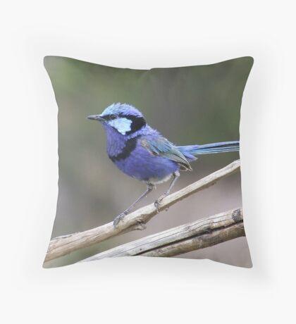 Little Blue Dreamer Throw Pillow