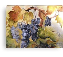 Villa Marie Vineyard Canvas Print