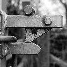 Lock by Paul Benjamin