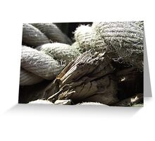 Knot Greeting Card