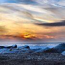 Lake Erie In January II by Sheri Nye