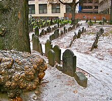 Granary Burying Ground by David Davies