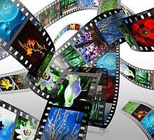 3D Filmstrip by Maggie Lowe
