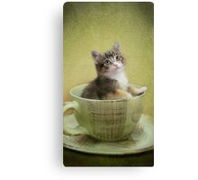 Would you like a spot of tea? Canvas Print