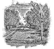Railroad Bridge Over the Yahara Photographic Print