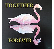 FLAMINGO, TOGETHER FOREVER Photographic Print