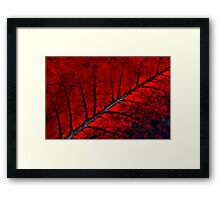 Nature on Fire Framed Print