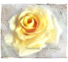 Touching your soul... Photographic Print