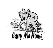 Carry me home by Steph (Shortpunk) Kuskunovic
