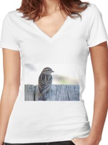 House sparrow sits on a weathered step Women's Fitted V-Neck T-Shirt