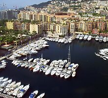 Beautiful Monaco Harbor by Lucinda Walter