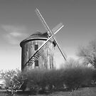 Windmill 3 by Barry W  King