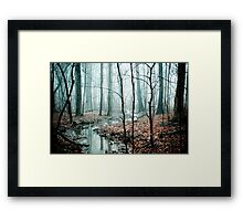 Winding Creek Framed Print