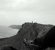 The Gower by Mjay