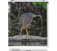 little green heron iPad Case/Skin