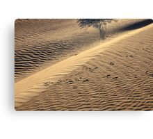 Only the shadows know - Death Valley Canvas Print