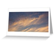 Sunset Crows (Banner) Greeting Card