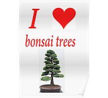 I LOVE BONSAI TREES Poster