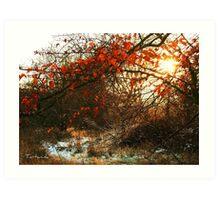 Autumn and Winter Art Print