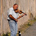 Sunset Violin Serenade by kweirich