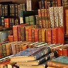 Les Livres du Bouquiniste by kweirich
