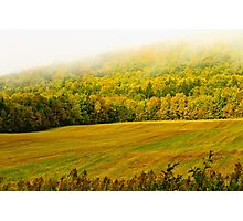 Foggy Morning in New Brunswick Photographic Print
