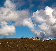 Clouds by Renee D. Miranda