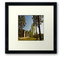 bruk Framed Print