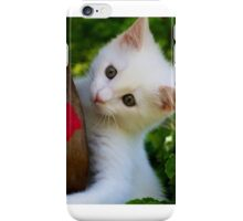 Kitten in Flower Pot iPhone Case/Skin