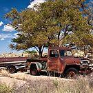 Lone Jeep by Tim Denny
