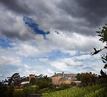 Storm brewing over the Vineyard by Kristi Robertson
