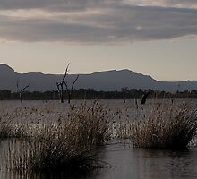 Sunset over Lake Fyans by crickmedia